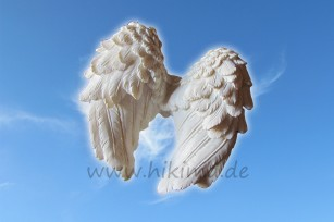 Flügel2 Muster